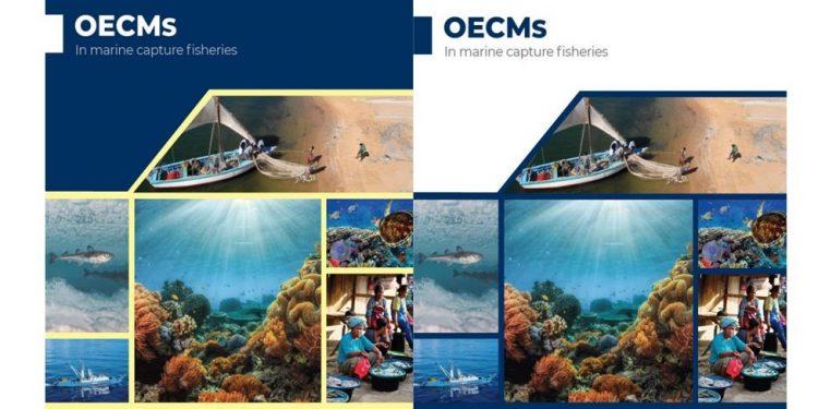 OECMs in Marine Capture Fisheries