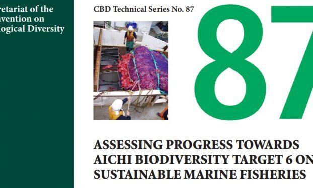Report: Assessing Progress towards Aichi Biodiversity Target 6 on Sustainable Fisheries